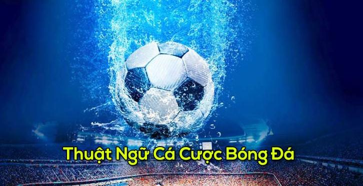 Những thuật ngữ trong cá độ bóng đá trực tuyến